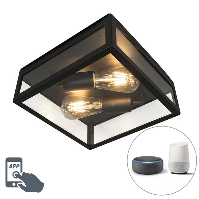 Smart-buitenplafondlamp-zwart-incl.-2-WiFi-ST64---Rotterdam
