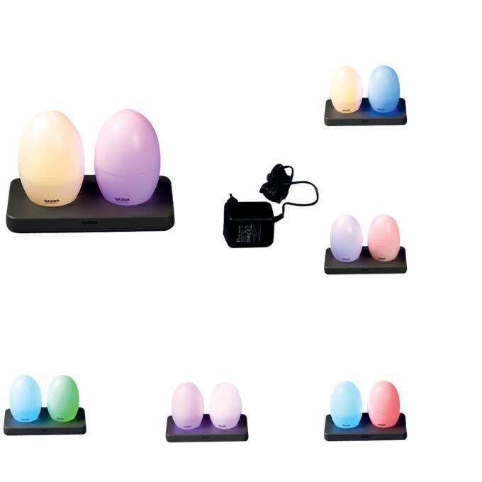 Set-van-twee-oplaadbare-LED-lampen-EGG