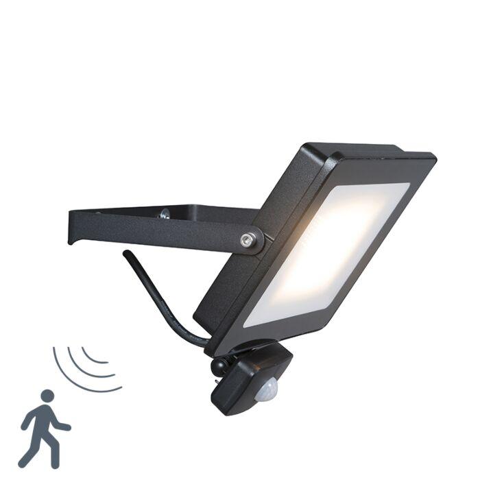 LED-straler-zwart-incl.-LED-30W-met-bewegingsmelder---Radius-1