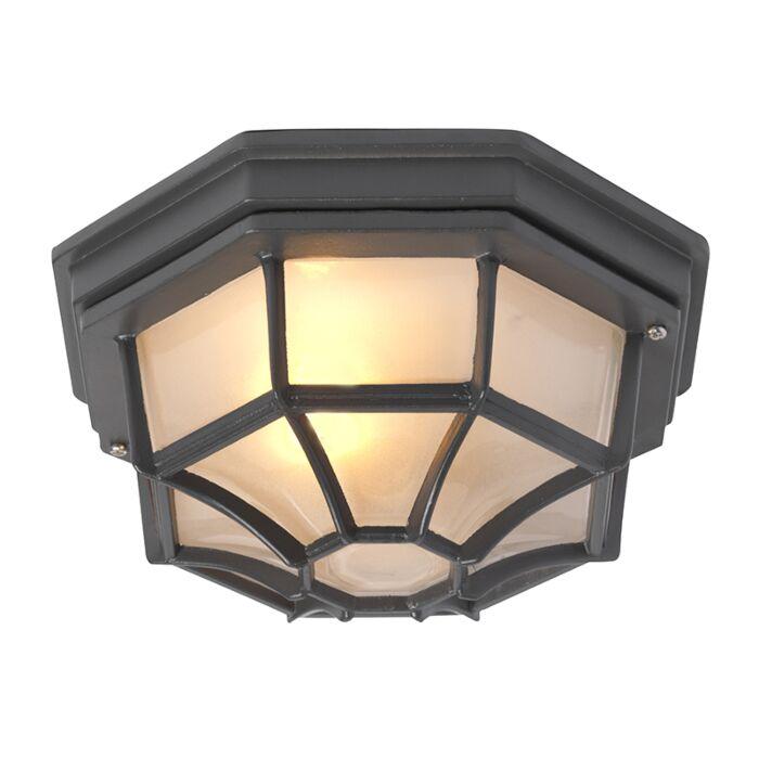 Landelijke-plafondlamp-donkergrijs-IP44---Bri-L