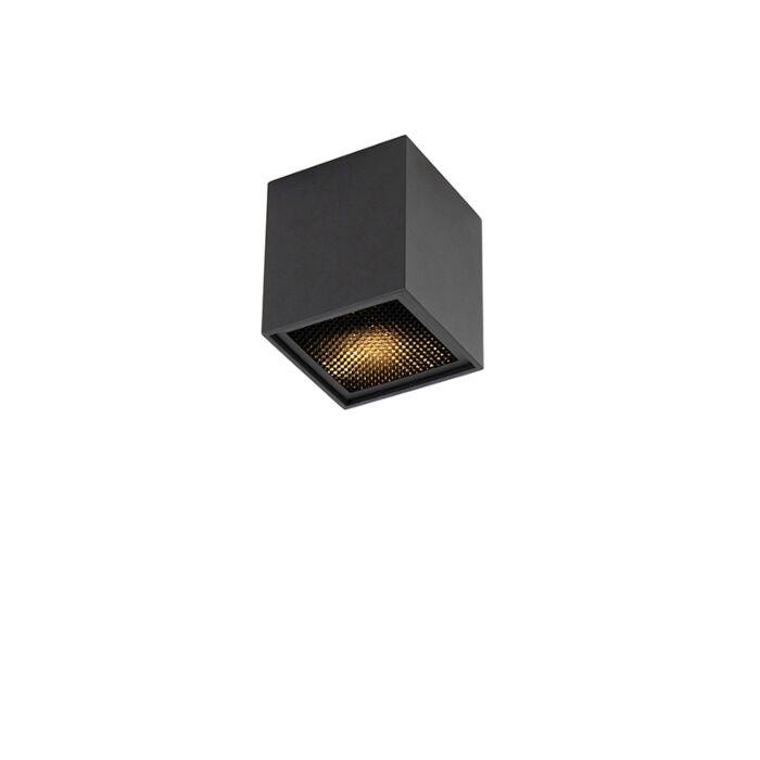 Design-spot-zwart---Qubo-Honey