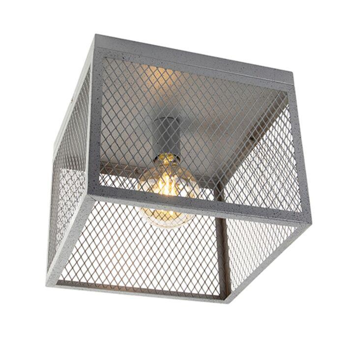 Industriële-plafondlamp-antiek-zilver---Cage-Robusto