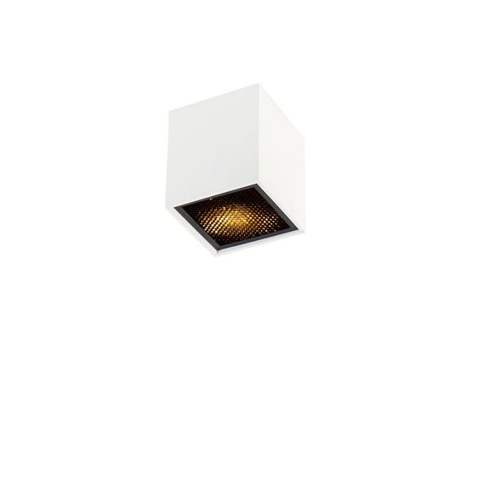 Design-spot-wit---Qubo-Honey